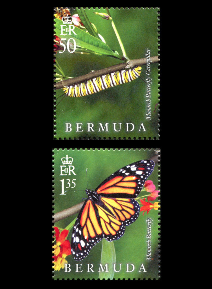 Bermuda Lifecycle Monarch Butterfly 4v 20/10/16
