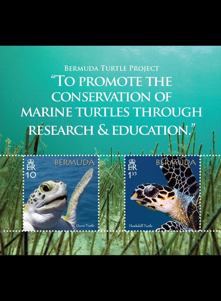 Bermuda Turtle Project 2 value miniature sheet 22/3/18