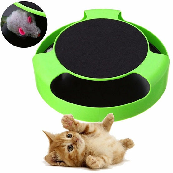 cat toys with mouse