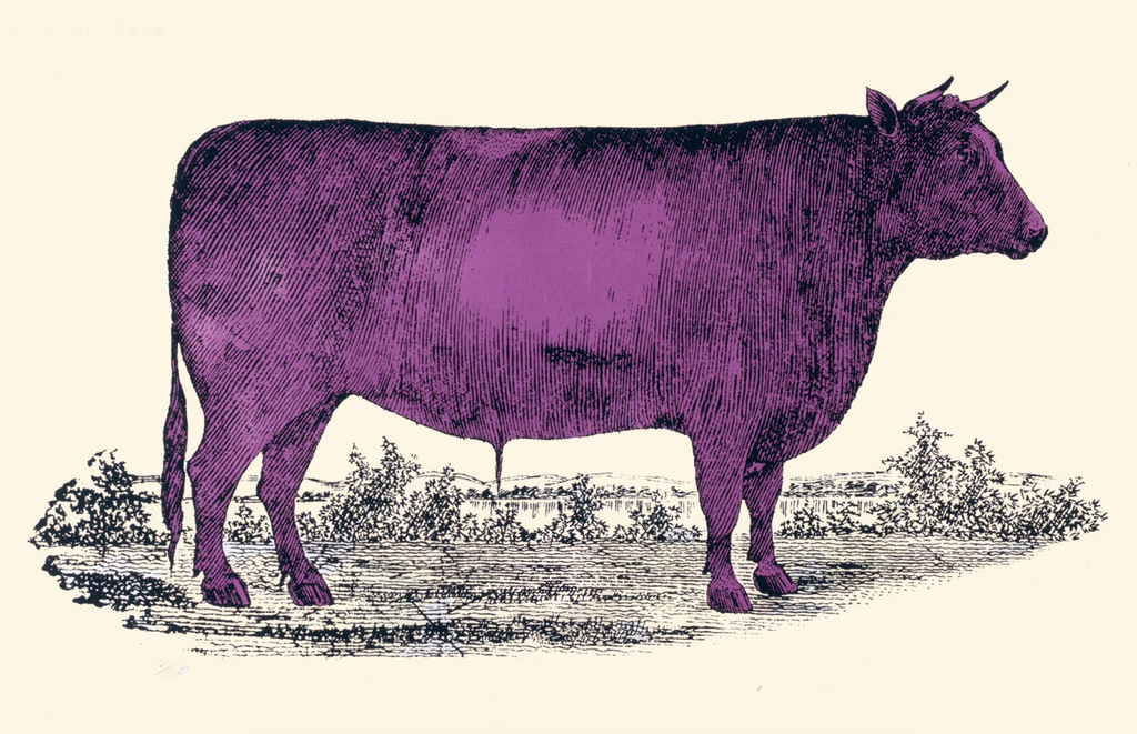 The Purple Bull