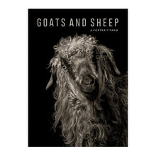 Goats and Sheep: A Portrait Farm
