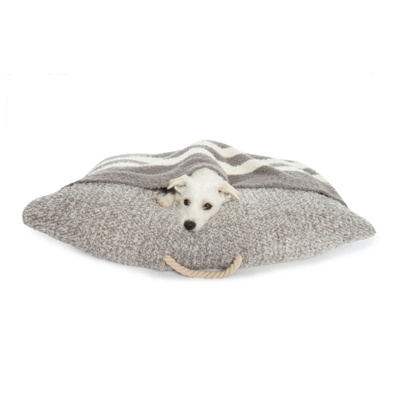 Cozy Dog Bed with Blanket