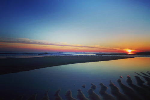 """Telescope of Color"" 