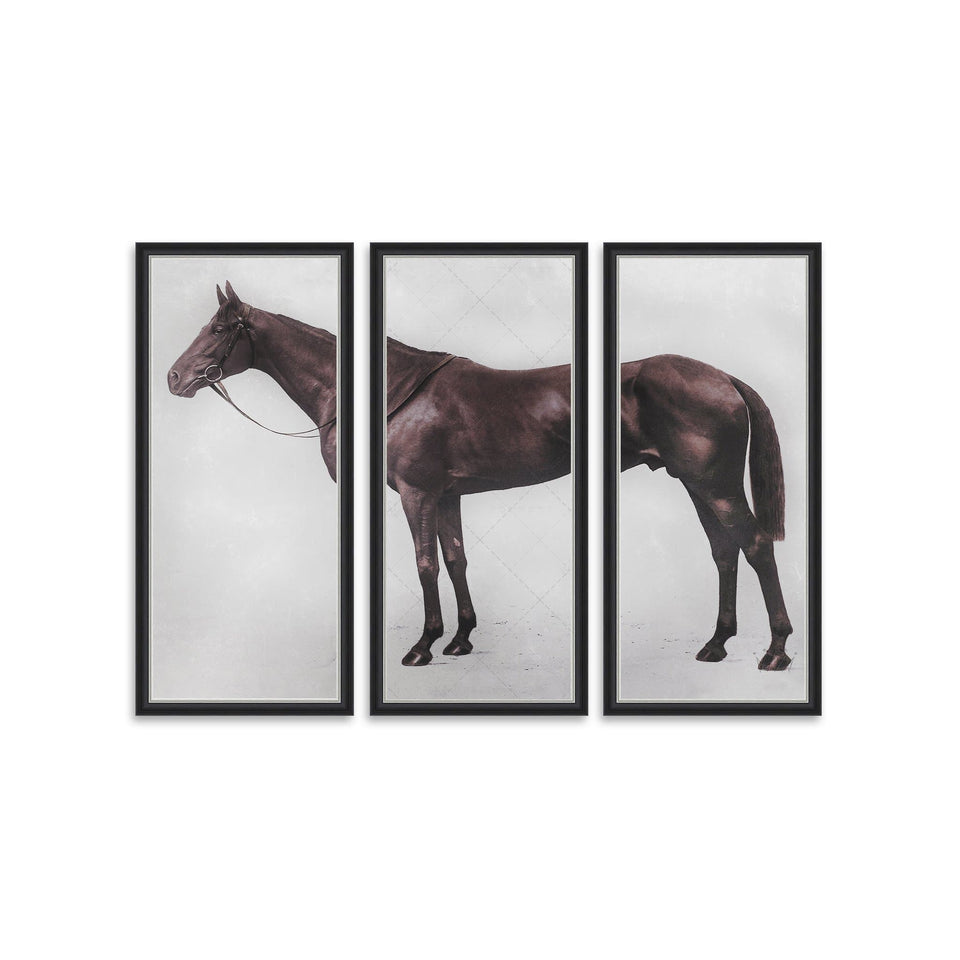 1928 ROYAL ASCOT THOROUGHBRED - LORD DENVER - Triptych - Foundry