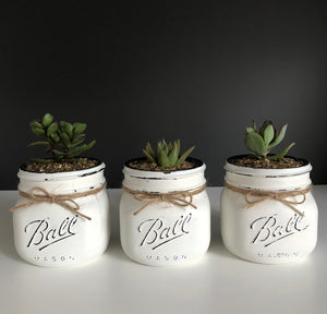 Ball® Mason jar succulents