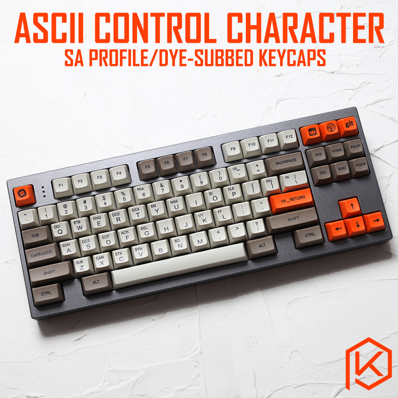 ASCII control character code sa profile Dye Sub Keycap Set thick PBT for gh60 xd60 xd84 cospad rs96 zz96 87 104 660