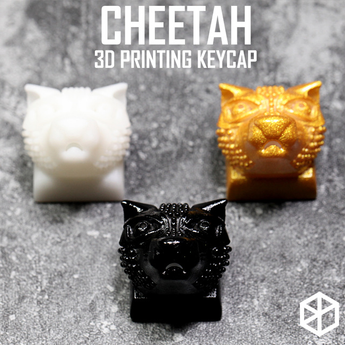 Novelty Shine Through Keycaps 3d printed print printing pla cheetah custom mechanical keyboards light Cherry MX compatible