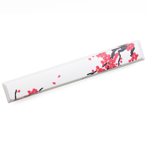 mstone Novelty allover dye subbed spacebar pbt beauty of spring 6.25u cherry profile