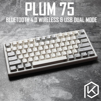 RGB Plum 75 NIZ Electro Capacitive Keyboard Bluetooth 4.0 wireless & USB Dual Mode EC keyboard 84 key programable 45g pbt cherry