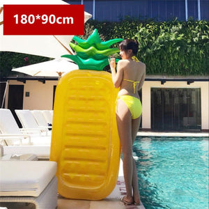 loomrack Large Fruit & Plant Floats Swimming Rings Long Pineapple