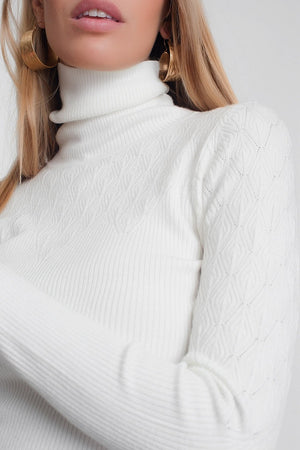 Soft Knitted Turtleneck Fitted Sweater in Cream