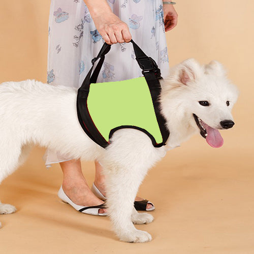TAILUP New Arrival Front Rear Type Dog Lift Harness