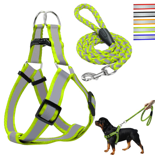 Step-in Dog Harness & Leash Set Reflective Nylon