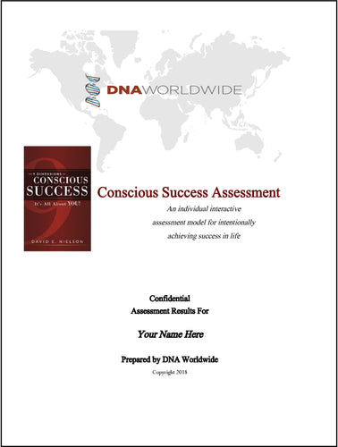 9DCS Conscious Success Assessment - Individual With Consulting
