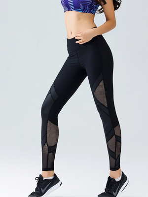 Shadow Cut and Stitched Slim Fit Leggings