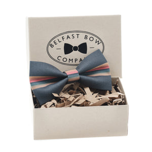 Doctor Who Bow Tie in Rainbow Stripe on Grey by the Belfast Bow Company
