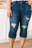 New Directions Distressed Capris