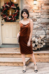 Bronze Beauty Velvet Dress