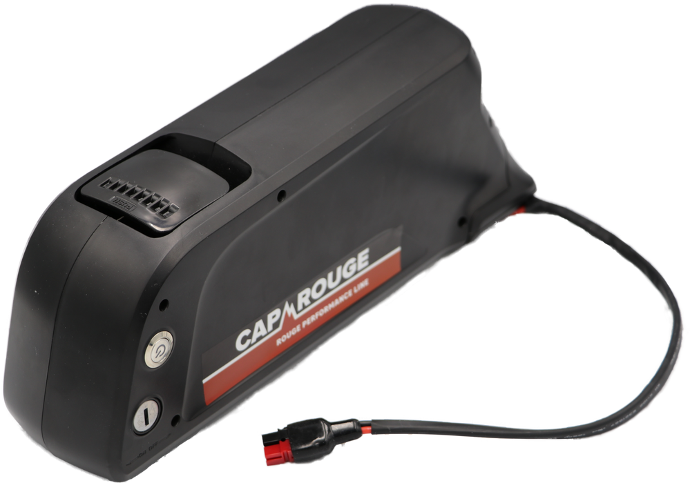 CPDOC48-14 E-Bike, 48 Volt 14AH, 672Wh, Dolphin Battery, Samsung cells