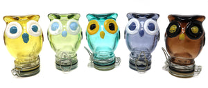 Owl Glass Container (100mL/Medium)