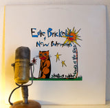 "Edie Brickell ""Shooting Rubber Bands At The Stars"" 1988 Folk Pop 