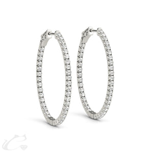 Circinus Hoop Earrings