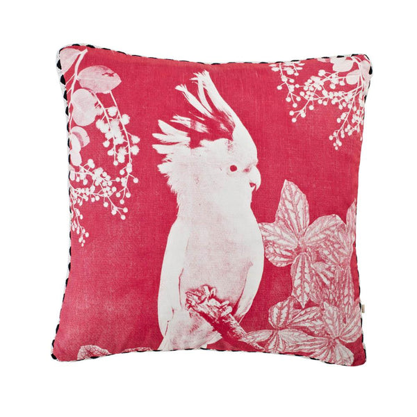BIG MAJOR PINK Cushion