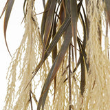 Plume Grass Hanging Bush