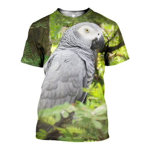 3D All Over Printed African Grey Parrot Shirts And Shorts DT02041901