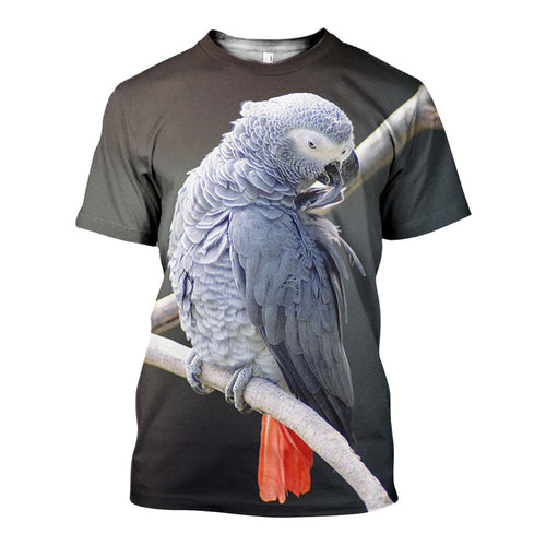 3D All Over Printed African Grey Parrot Shirts And Shorts DT191109
