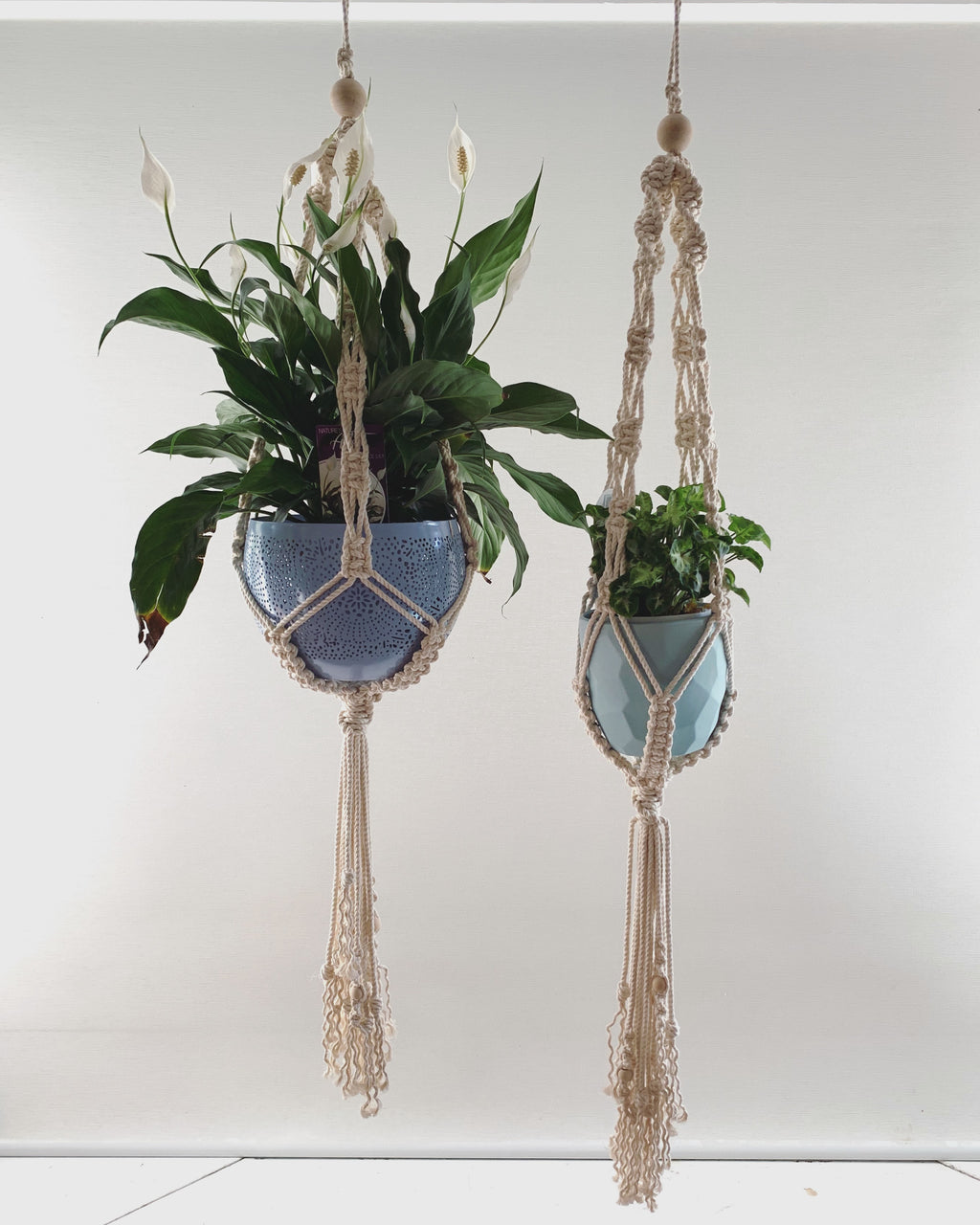 Single Macramé Plant Hanger - Assorted colours available