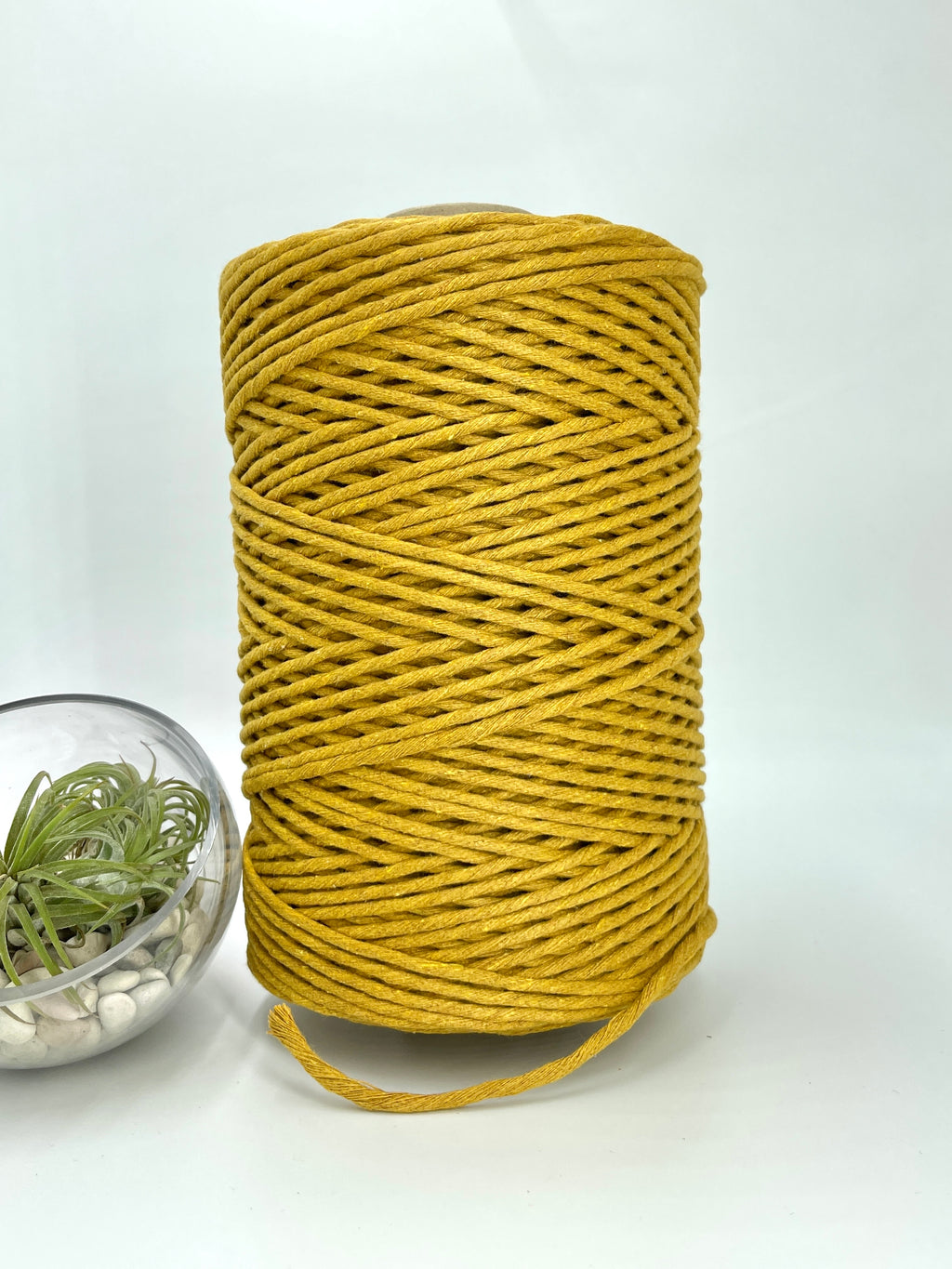 3mm Cotton Macramé String - 1kg - French Mustard