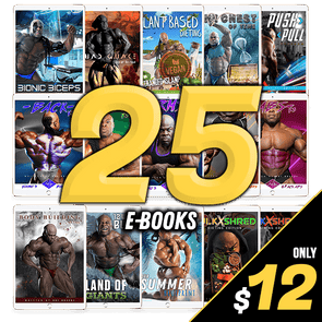 25 FOR $12 - HOLIDAY E-BOOK BUNDLE