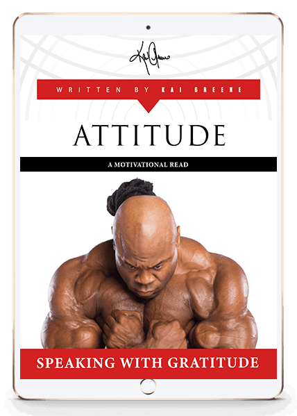 Attitude - Motivation E-Book