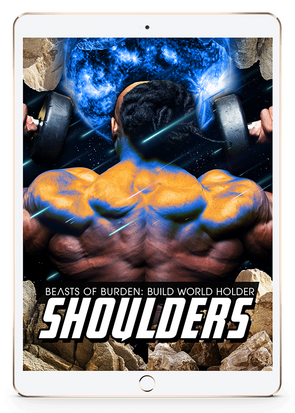 Build World Holder Shoulders