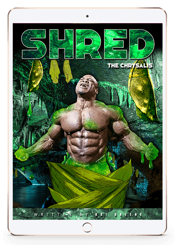 SHRED THE CHRYSALIS