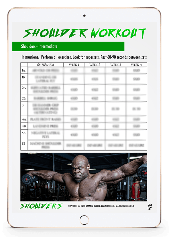 SHOULDERS V3 - Boulder Shoulders
