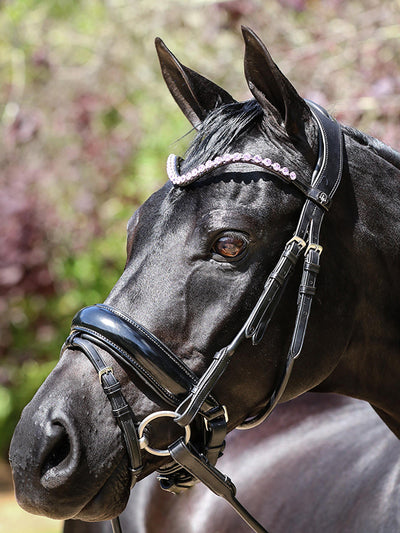 LT Cavesson Rolled Noseband + Flash