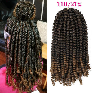 Curly Twist Crochet Braids