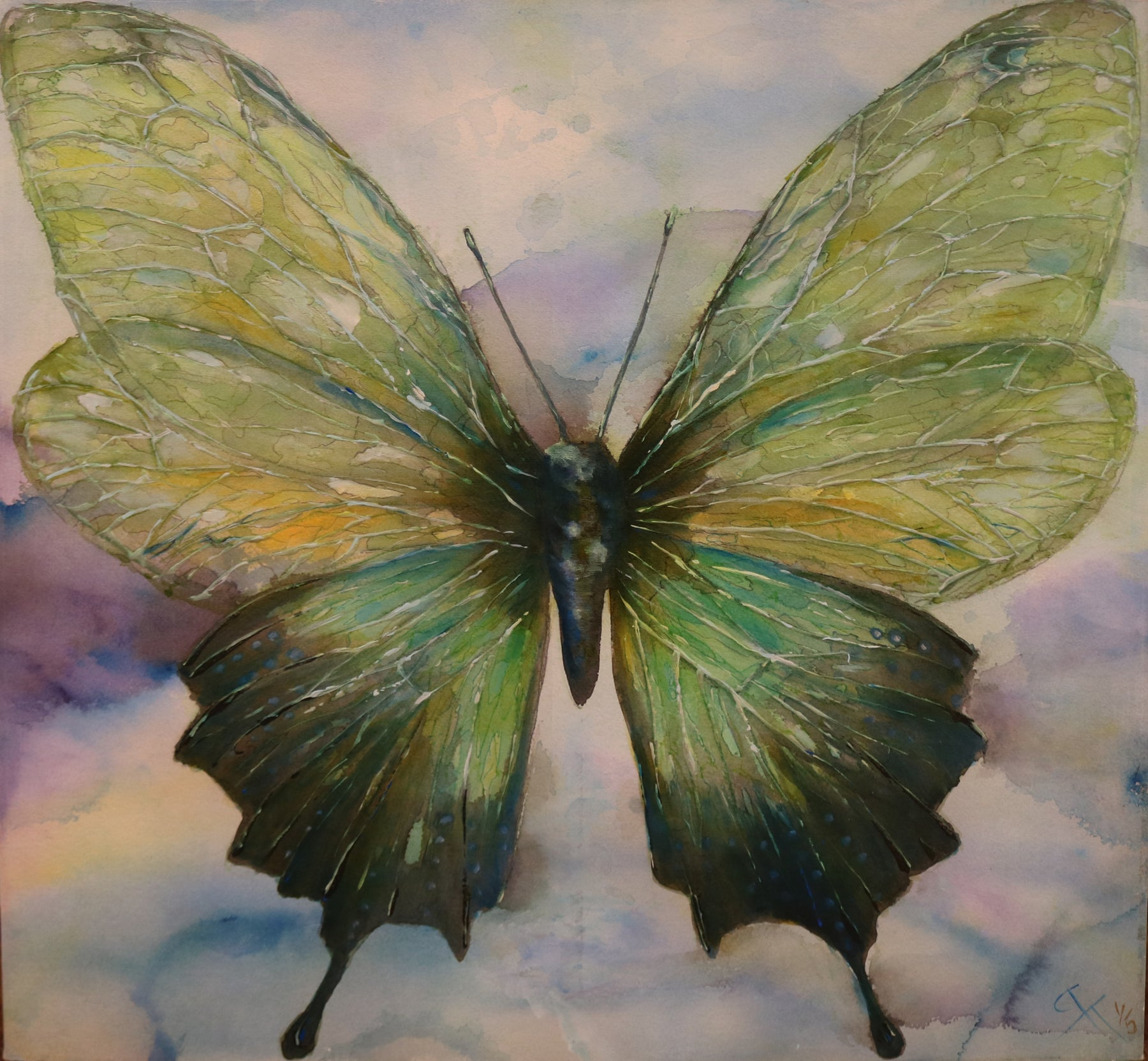 "Butterfly in green - Acrylic on Canvas(Mixed Media Giglee 1/5) by Cheryl Tuck-Tallon. 36""(W)x36""(H) - CT179-001MM"