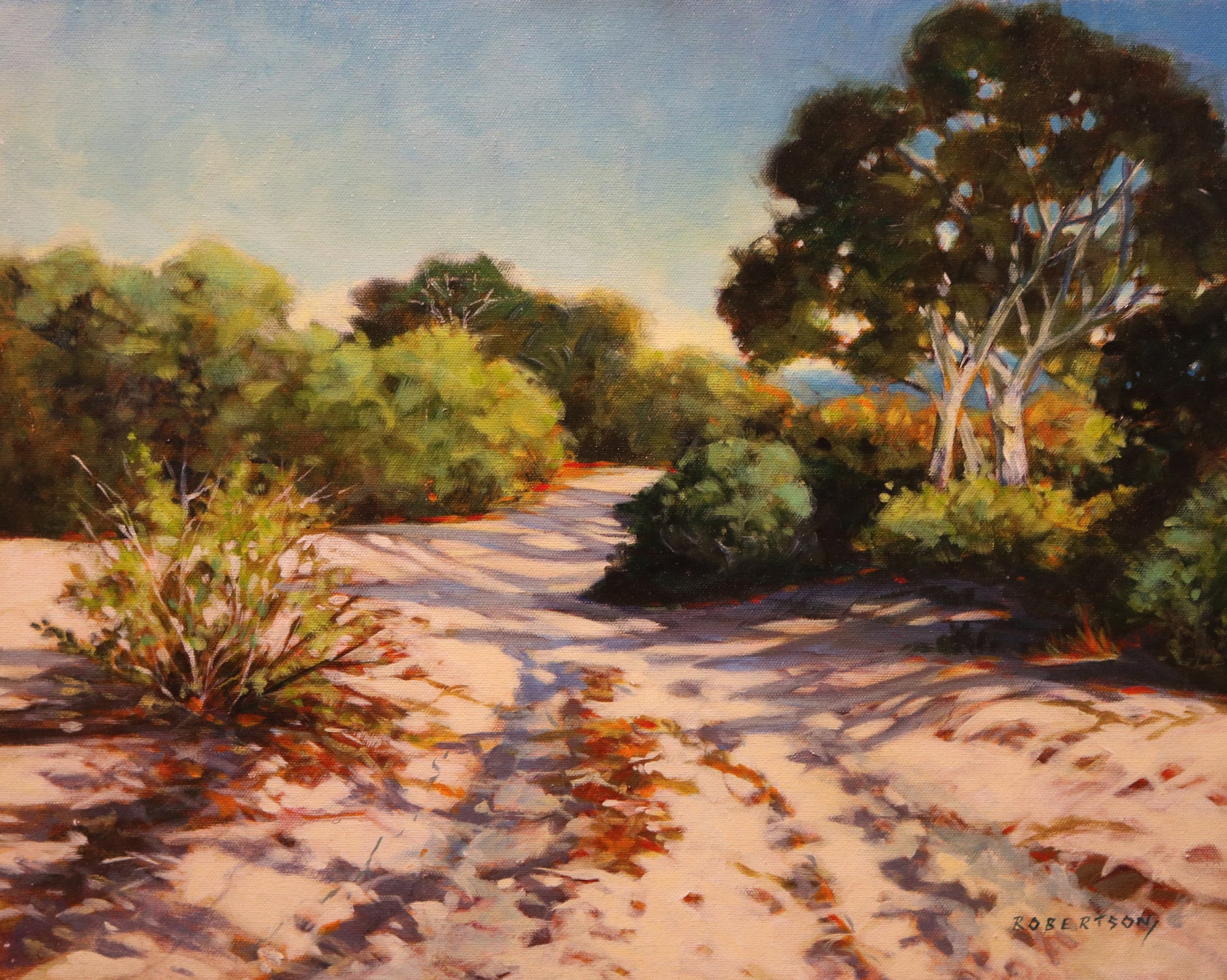 "Evening Shadows - Acrylic on Canvas (Original) by Janice Robertson. 20""(W)x16""(H) - JR153-000RG"