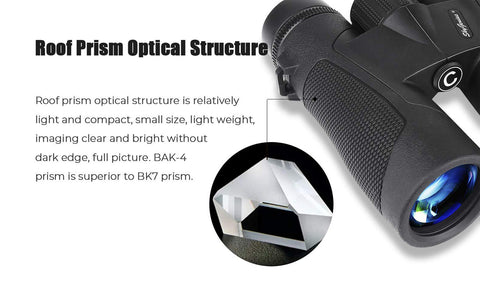 SkyGenius 10x42 binocular - BaK4 roof prism optical structure