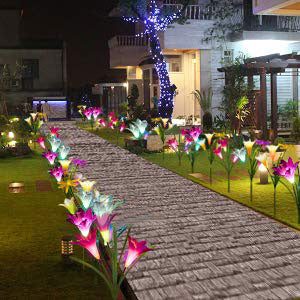 Solar Garden Stake Lights Outdoor