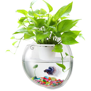 Wall Hanging Fish Bowl