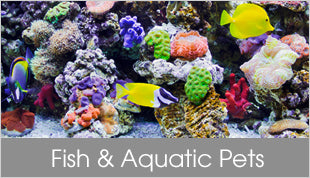 Fish and Aquatic Pets