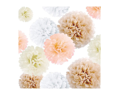 Tissue Paper Pom Poms 20 Pieces Flower Balls for Party Decorations
