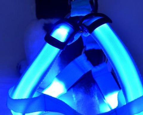 LED Light Series Adjustable Dog Harness Leash