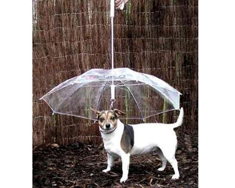 Pet Dog Umbrella with Dog Leash - Transparent