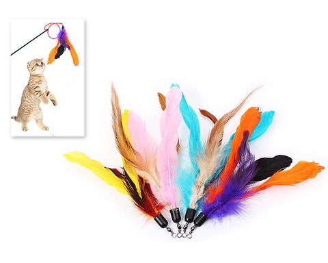 Cat Feather Toys Refill 4 Pieces