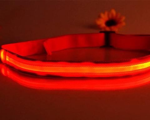 LED Running Waist Belt - Red